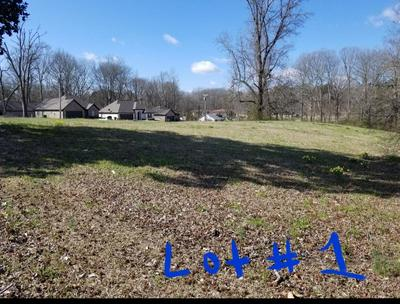 LOT# 1 3RD AVE., SALTILLO, MS 38866 - Photo 2