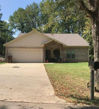253 KNIGHT DR, Saltillo, MS 38866 - Photo 1