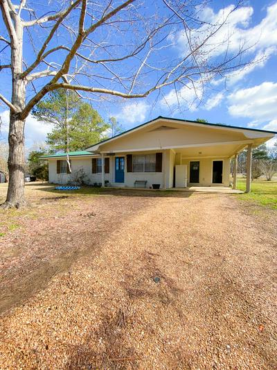 163 PATTERSON CIR, SALTILLO, MS 38866 - Photo 1