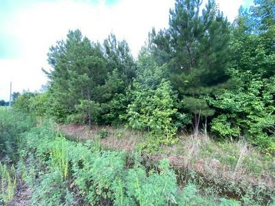 LOT 12 & 13 ROCHELLE DR., Amory, MS 38821 - Photo 2