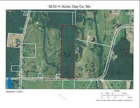 BRAND-UNA (38.53+/- ACRES) ROAD, Prairie, MS 39756 - Photo 1