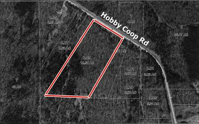 HOBBY COOP ROAD, Thaxton, MS 38871 - Photo 1