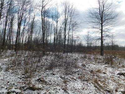 10008 CABLE LINE ROAD, Diamond, OH 44412 - Photo 2