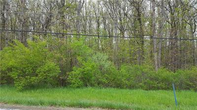 RIVER ROAD PARCEL 16, PERRY, OH 44081 - Photo 1