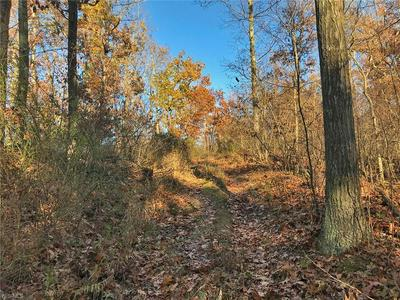 MCCORMICK RUN RD, Salineville, OH 43945 - Photo 1