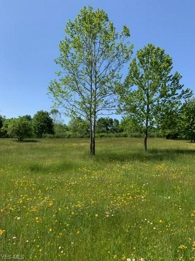 VL CHAGRIN RIVER ROAD, Solon, OH 44022 - Photo 2