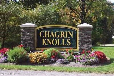 16855 KNOLLS WAY, Chagrin Falls, OH 44023 - Photo 2