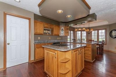 11380 MOURNING DOVE PL, PAINESVILLE, OH 44077 - Photo 2