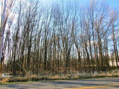 NELSON MOSIER RD, Leavittsburg, OH 44430 - Photo 2