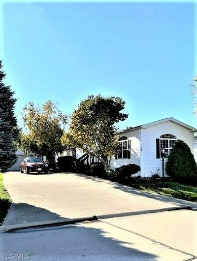 579 SANDTRAP CIR, Painesville Township, OH 44077 - Photo 1