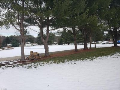 LODGE RD SOUTHWEST, Sherrodsville, OH 44675 - Photo 1