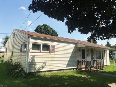 17 MILL ST, Leetonia, OH 44431 - Photo 2