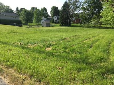 WHIPPLE AVENUE, CAMPBELL, OH 44405 - Photo 2