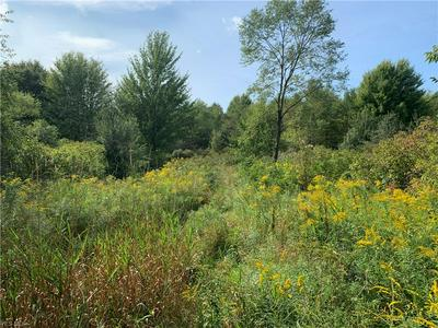MIDDLE RD, Pierpont, OH 44082 - Photo 2