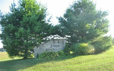S/L 2 STONE RIDGE DRIVE, Rootstown, OH 44272 - Photo 2