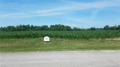 WHEELER RD 006, Garrettsville, OH 44231 - Photo 1