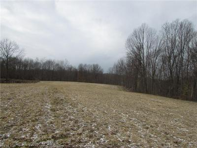JOHNSON ROAD, STOCKPORT, OH 43787 - Photo 2