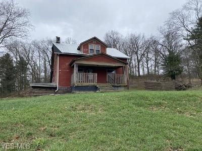 40151 STATE ROUTE 39, WELLSVILLE, OH 43968 - Photo 1