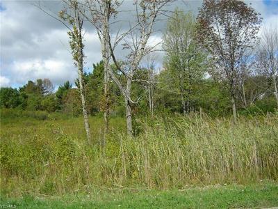 10120 CHARLTON LANE, Newbury, OH 44065 - Photo 2