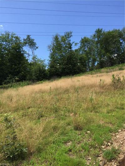 VL HAMMOND SCHOOL ROAD, Wellsville, OH 43968 - Photo 1