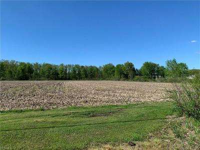 GRIGGS ROAD, Jefferson, OH 44047 - Photo 2