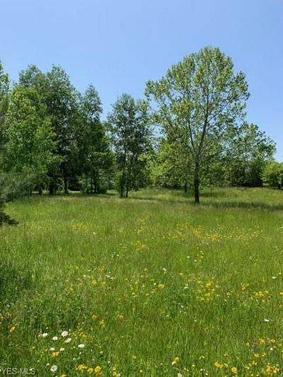 VL CHAGRIN RIVER ROAD, Solon, OH 44022 - Photo 1