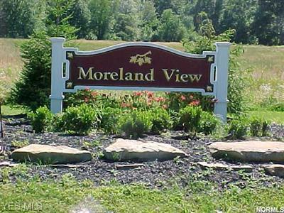 25 MORELAND # 25, Auburn, OH 44023 - Photo 1