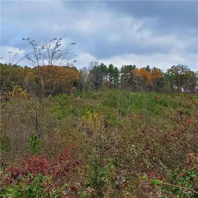 ST ROUTE 555, Cutler, OH 45724 - Photo 2