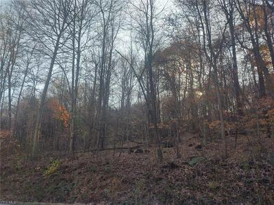 COUNTY ROAD 160, Dundee, OH 44624 - Photo 2