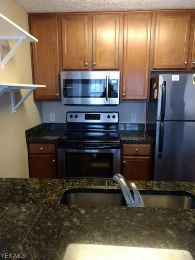 1503 STONEY RUN TRL # 1503, Broadview Heights, OH 44147 - Photo 2