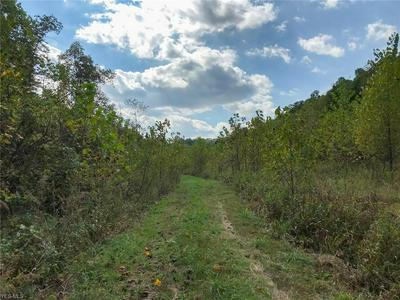 SNAKE HOLLOW ROAD, Crooksville, OH 43731 - Photo 1