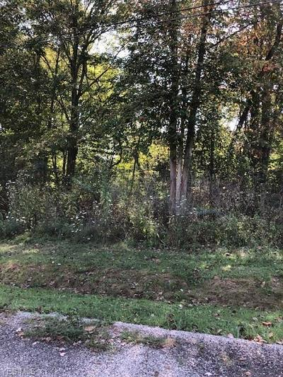 0 BURT STREET, Byesville, OH 43723 - Photo 1