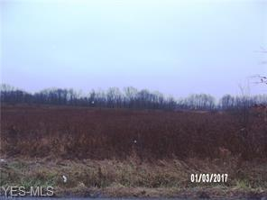 1209 LAYER RD, Leavittsburg, OH 44430 - Photo 1