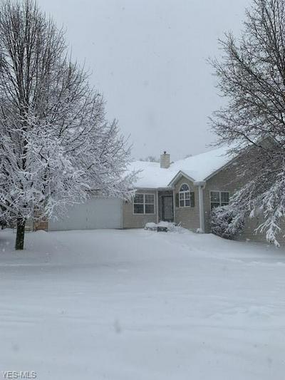 973 GRAND VIEW LN, Aurora, OH 44202 - Photo 1