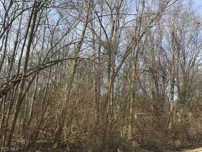 CARRUTHERS ROAD, Tallmadge, OH 44278 - Photo 1