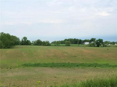 9999 COUNTY ROAD 201, Millersburg, OH 44654 - Photo 2