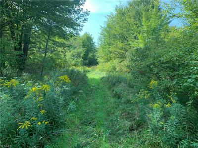 MIDDLE RD, Pierpont, OH 44082 - Photo 1