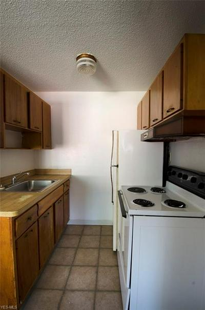22010 RIVER OAKS DR APT 10, Rocky River, OH 44116 - Photo 2
