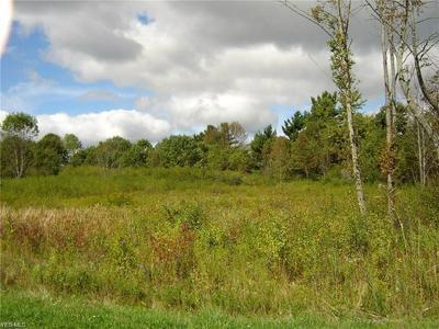 10120 CHARLTON LANE, Newbury, OH 44065 - Photo 1