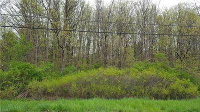 RIVER ROAD PARCEL 15, PERRY, OH 44081 - Photo 2