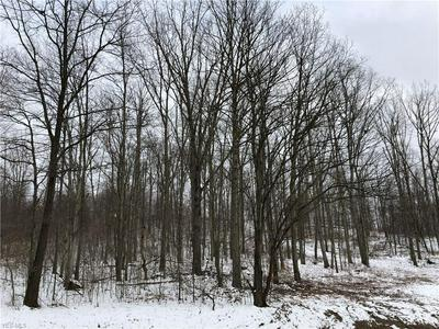HIBBETTS MILL, Wellsville, OH 43968 - Photo 1