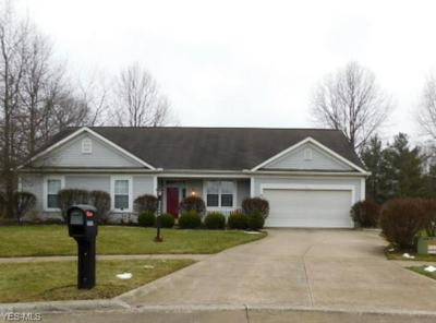 22262 COUNTRY MEADOWS LN, STRONGSVILLE, OH 44149 - Photo 1