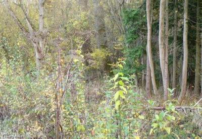 LOT 9 S RIDGE ROAD # PARCEL 9, Perry, OH 44081 - Photo 1