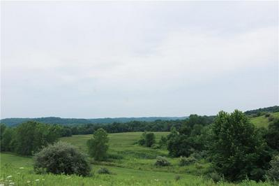 STATE RD 93, Kimbolton, OH 43845 - Photo 2