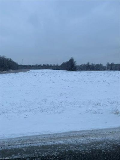 LOT 1 MILLER RD, Lowellville, OH 44436 - Photo 1