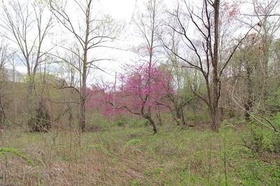 ARCHERS RIDGE, Caldwell, OH 43724 - Photo 2