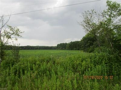 EAST UNION ROAD, Lenox, OH 44047 - Photo 2