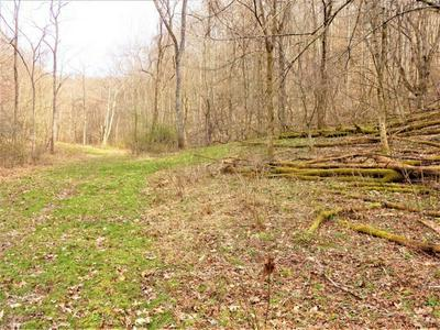 MAPLE RUN RD, Looneyville, WV 25259 - Photo 2