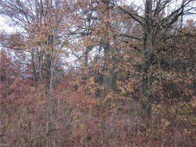 LOT 17 CORBETT, Diamond, OH 44412 - Photo 1