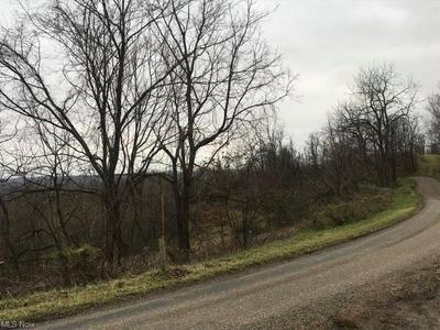 45244 SUGARTREE RIDGE RD, Woodsfield, OH 43793 - Photo 2